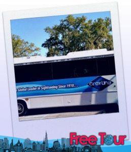 hop on hop off hop off new orleans bus tours y mas 258x300 - Hop On Hop Off Hop Off New Orleans Bus Tours Y Más